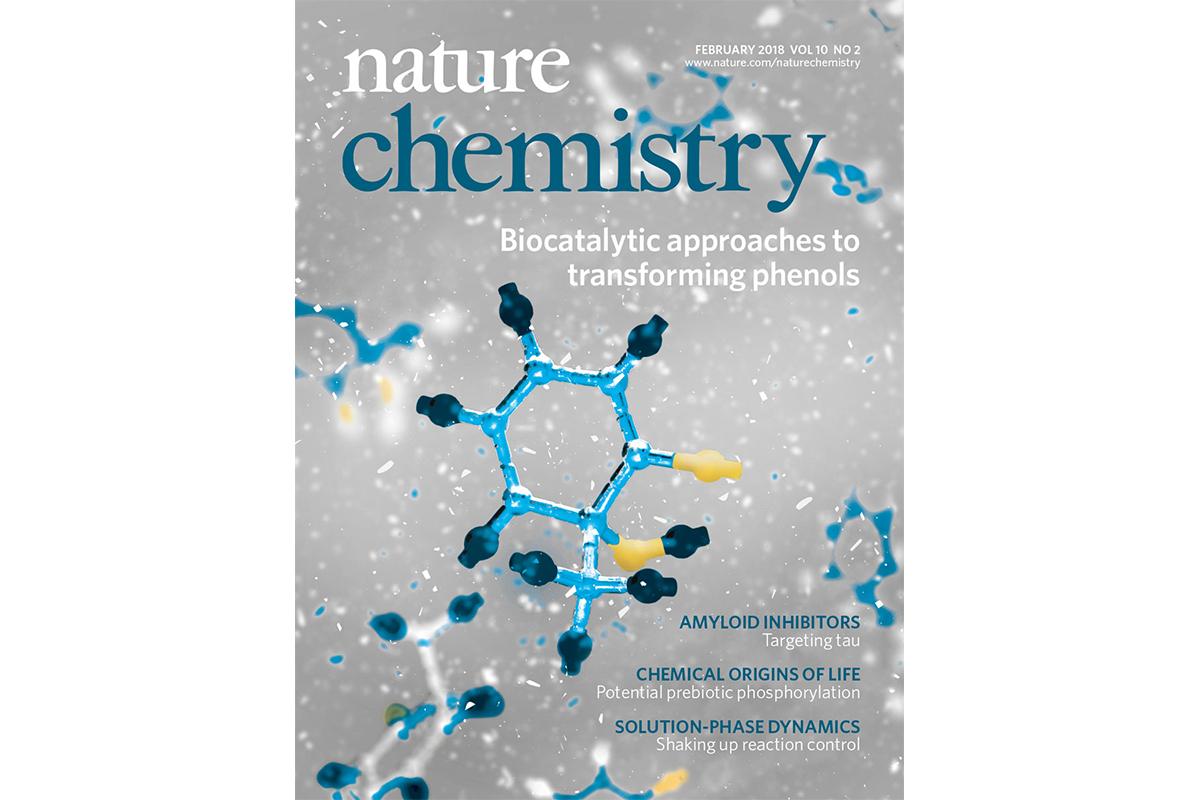 Narayan cover Nature Chemistry 2018