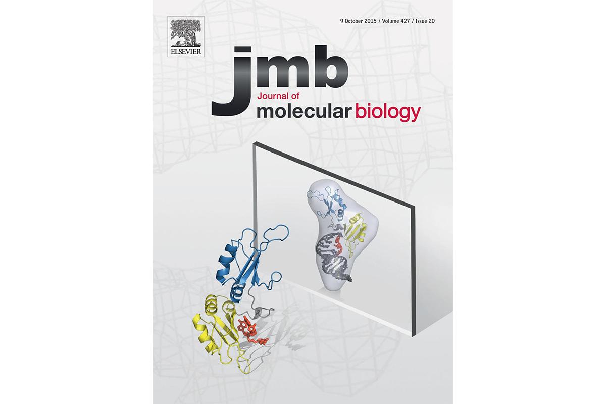 Stuckey cover JMB