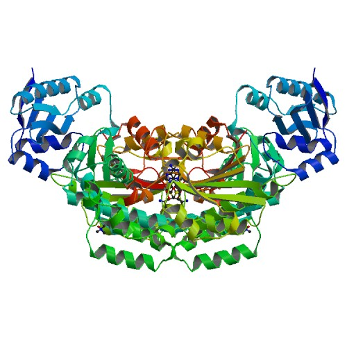 Structure of AprA Methyltransferase 2 - GNAT didomain in complex with SAH