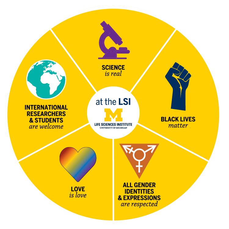 LSI values