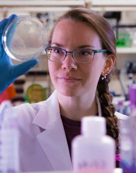 Michigan Life Sciences Fellow Krista Armbruster, Ph.D.