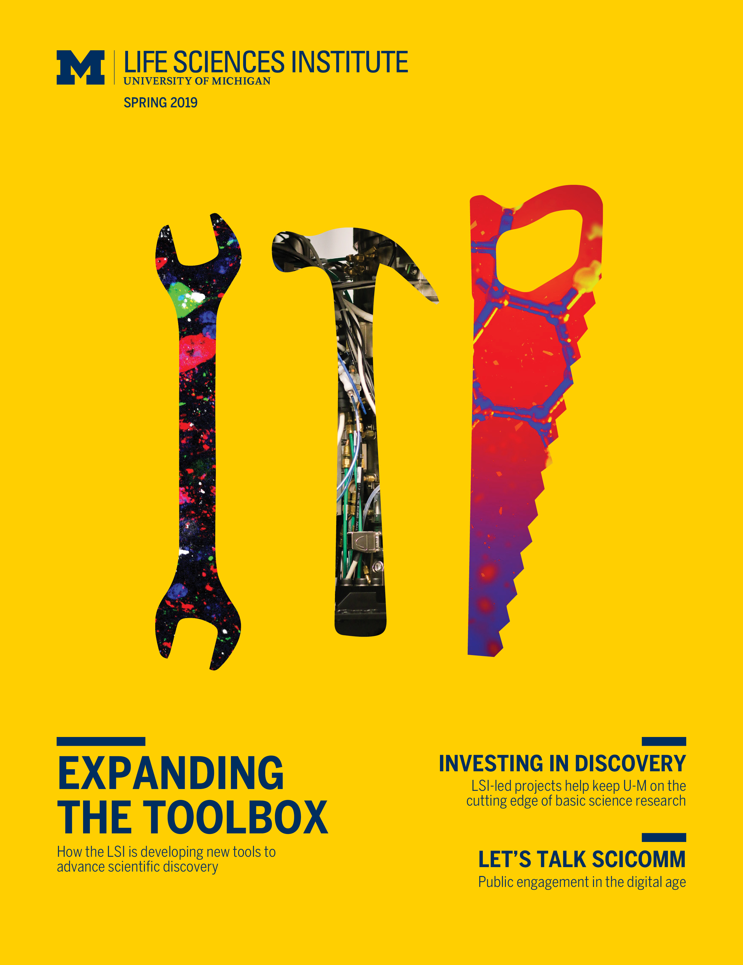 2019 LSI Magazine Cover