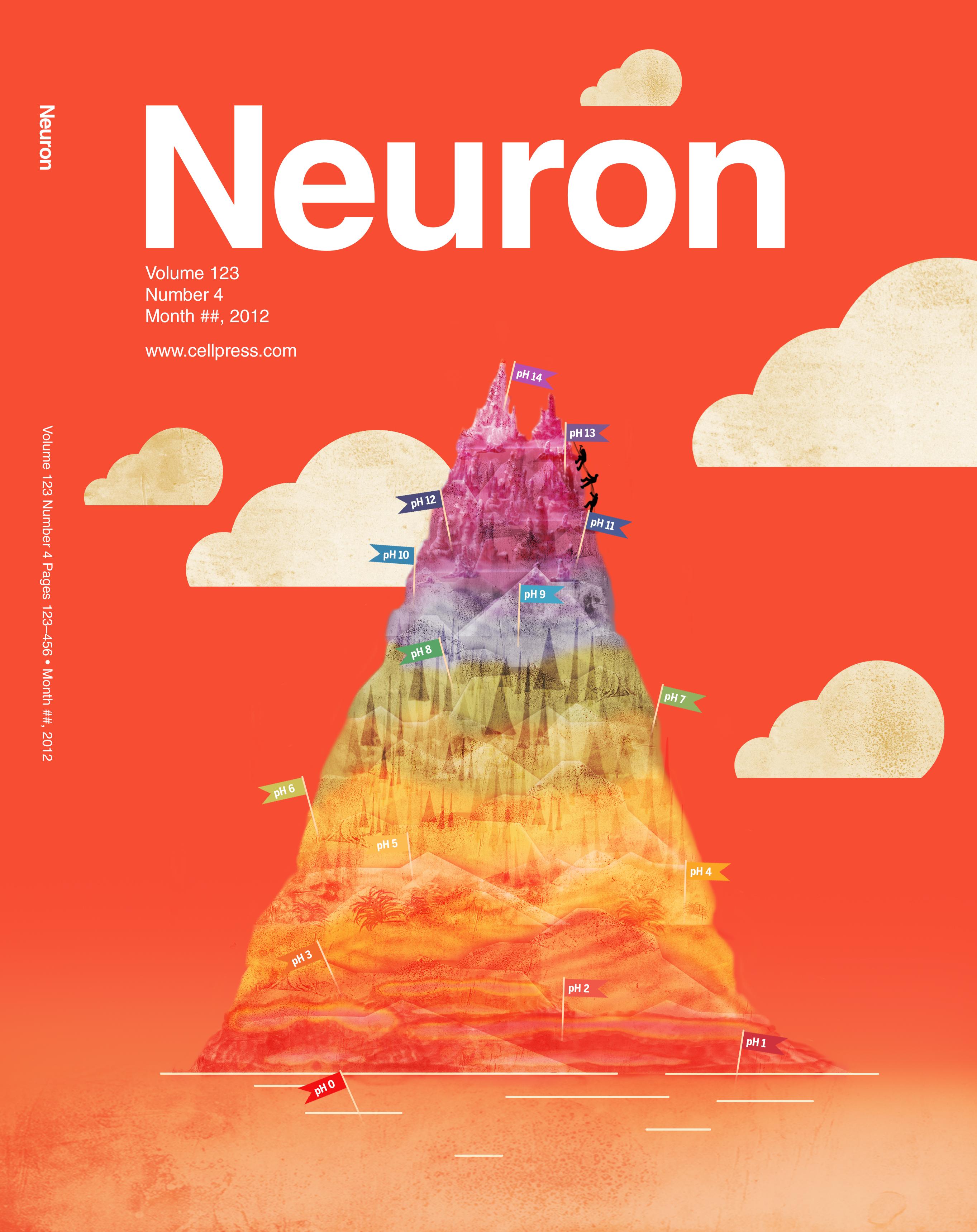 Neuron cover example
