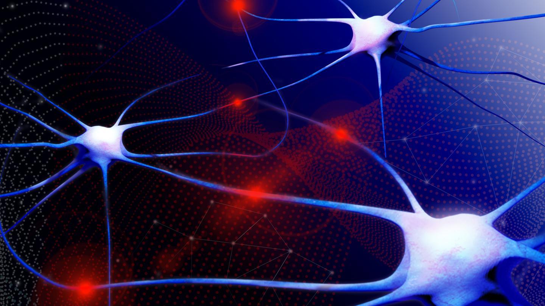 Artistic representation of a neural network