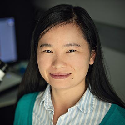 Wenjing Wang