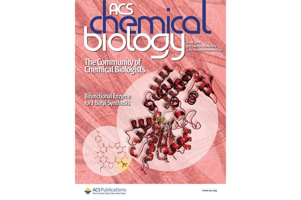 Smith cover ACS Chemical Biology
