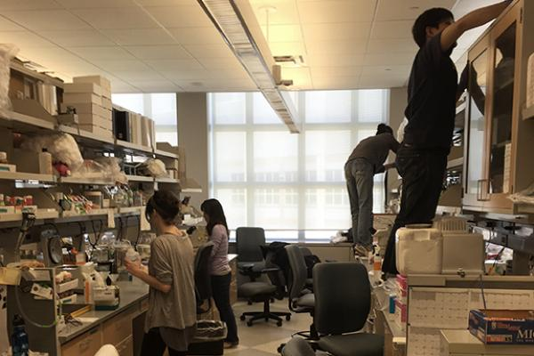 Lab Members Cleaning