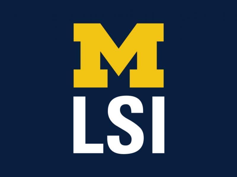 LSI Block M Logo