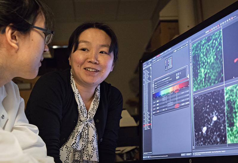 Yukiko Yamashita and lab member