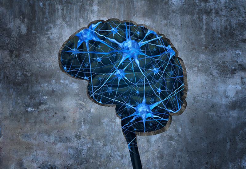 brain illustration (wildpixel / Thinkstock)