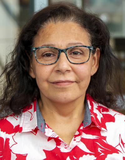 Farideh Sabeh