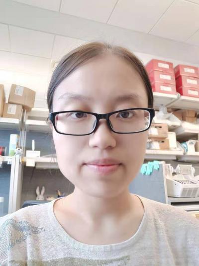 Shanshan Liu, Ph.D.