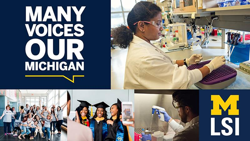 Many Voices, Our Michigan montage