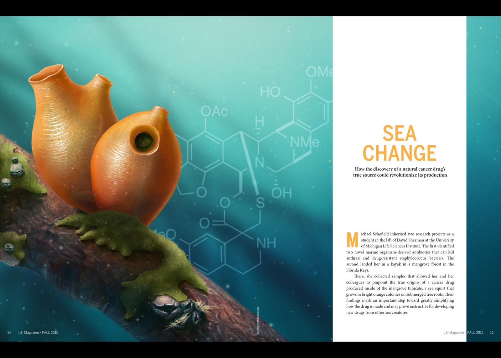 Sea Change Illustration