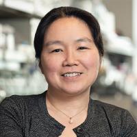 Yukiko Yamashita