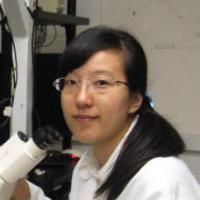 Ophelia Chen