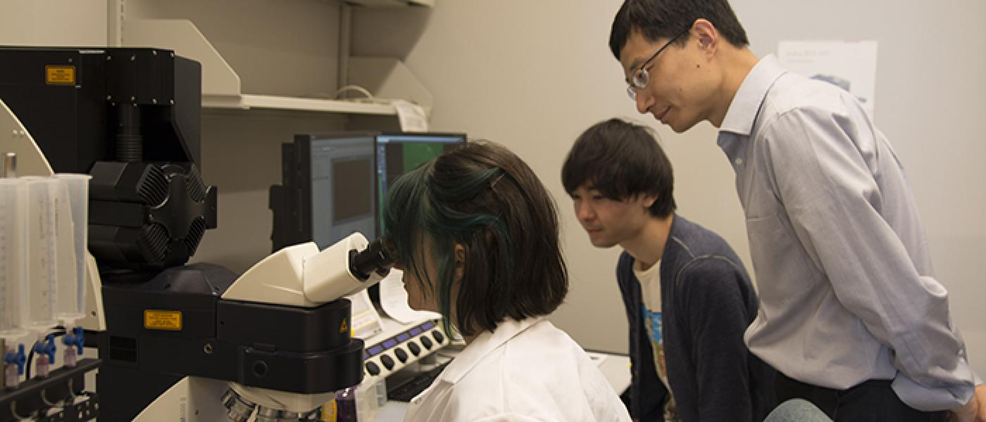 Ye lab members at the microscope